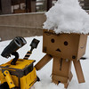 danbo: my head is cold...<br /> wall-e: wall-eee!! (translation: *laughs*)