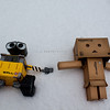 danbo: let's make snow angels
