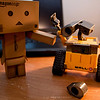 danbo: u're eye fell off!