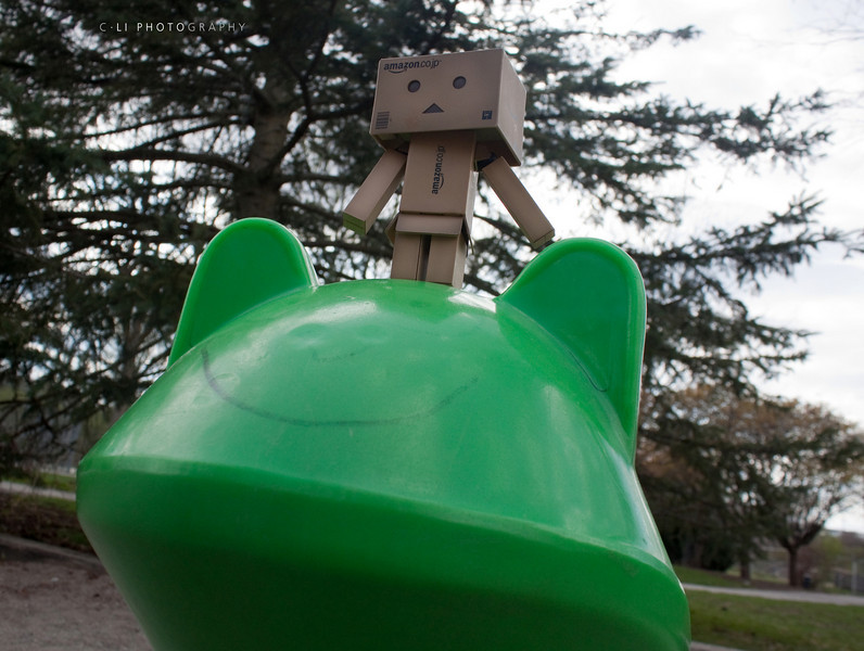 bounce froggy!