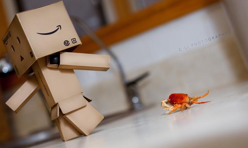danbo: AHHHHH!!! go away crabby!
