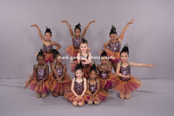 Dance Academy West - Wednesday April 27, 2016