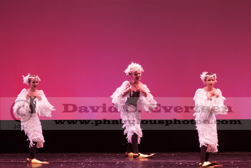 Dance American Regionals Tampa, FL  - 2013 - DCEIMG-2461