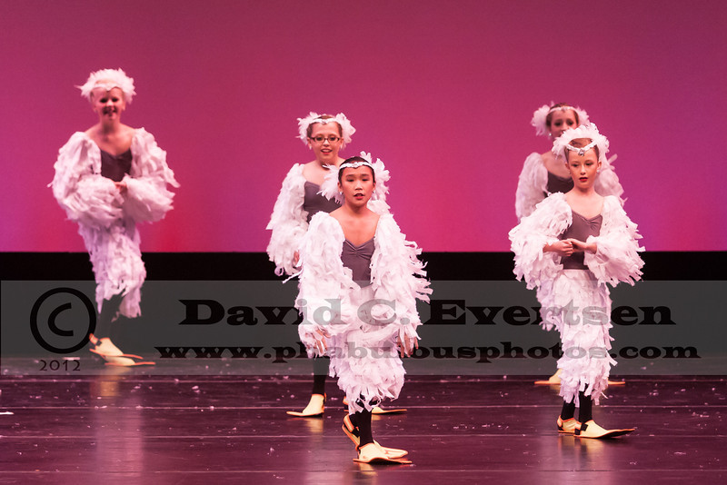 Dance American Regionals Tampa, FL  - 2013 - DCEIMG-2474