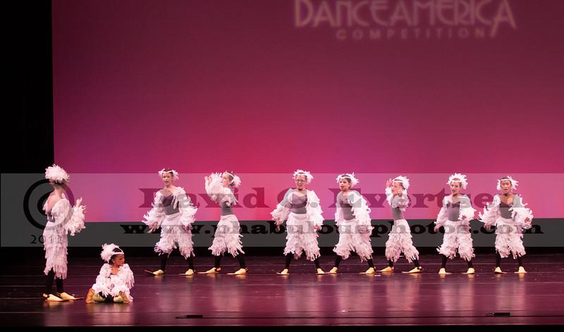 Dance American Regionals Tampa, FL  - 2013 - DCEIMG-2441