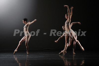 Dominic Walsh Dance Theater