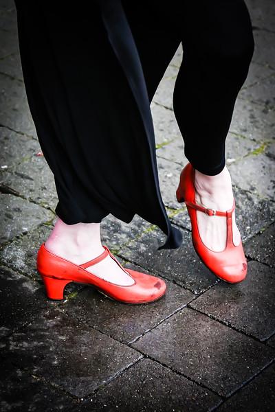 Raices y Alas Flamenco