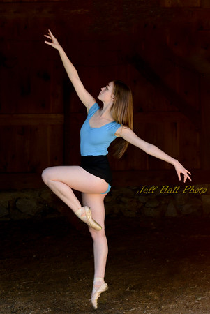 Dance-Portfolios