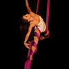 Dance, Sport and Circus Arts :