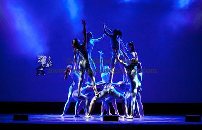 2011 Synergy