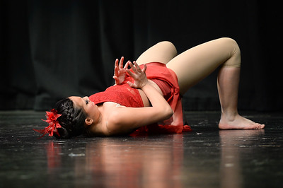 GB1_1439 20150307 USA Dance Challenge South