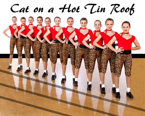 Cat on a Hot Tin Roof Team  IMG_2514-Edit