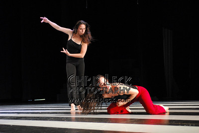 Danzas Reverberantes