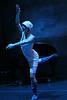 American Repertory Ensemble: In a Sense : Choreography:  Dancers: costumer Design: Lighting design:     Photography: Amitava Sarkar, http://insightphotography.smugmug.com/
