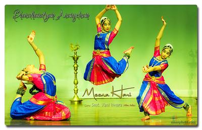 msanphoto_meena_bharathanatyam_arangetram_collage_fb