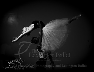 Tribute to Ballet Russes 2013