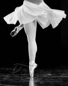 Ballet Under the Stars 2012