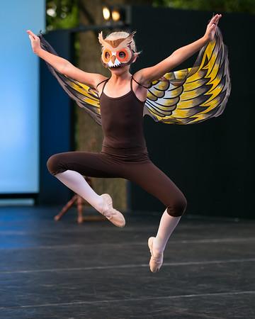 Ballet Under the Stars 14