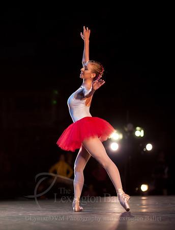 Ballet Under the Stars 2013