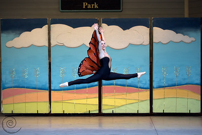 A Prairie Tale, Ballet in the Park ~ Ballet Wichita 2013