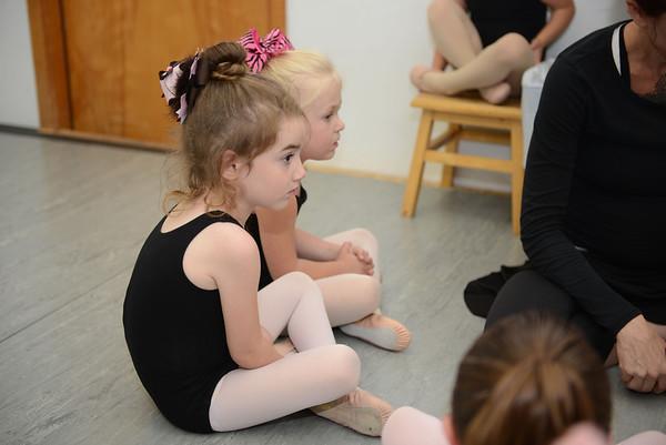 Ballet & Fairy Party 2013