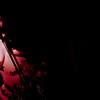 VelvetHearts_RedLightGirly-66