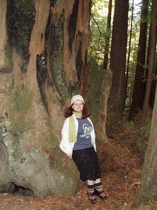Sophia and a big tree stump