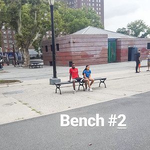 8-2018_Bench_Cora 3-2