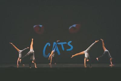 Dance-13
