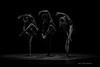 190501_CSUF 2019 Spring Dance_D4S4859-58