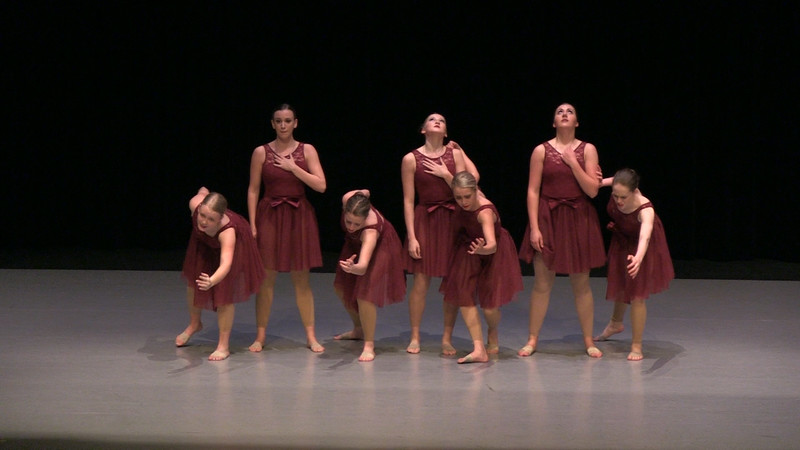2016 Dance Arts Academy Recital