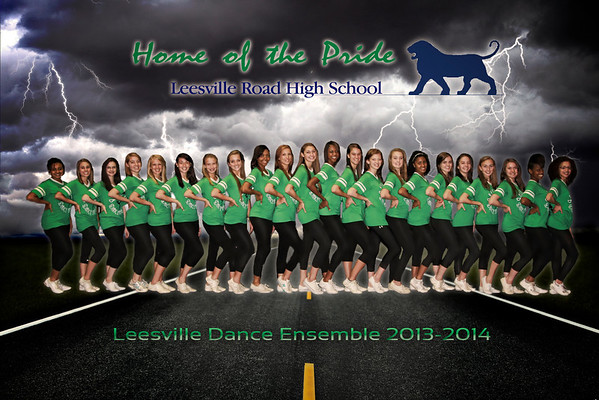 Dance Ensemble 2013_2014