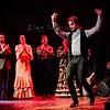 200123 Flamenco Vivo 301