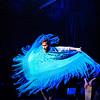 200123 Flamenco Vivo 112
