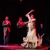 200123 Flamenco Vivo 306