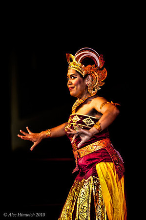 """This dancer is performing the Cendrawasih bird dance This Bali dance depicts the courtship of a bird of paradise in the mating season. Cendrawasih, also called """"The Dancing Bird"""", lives in the hinter land of West Irian (Indonesia) and is well known to the people because of his beautiful rainbow colored feathers.This dance is a """"whole"""" person dance with complex eye and hand movements. A Google search for """"Bali Cendrawasih dance"""" will turn up lots of hits for this intricate dance, e.g. <a href=""""http://www.youtube.com/watch?v=IbTGq8QQkjs"""">video</a>.  2010 International Festival Raleigh, NC October 2, 2010"""