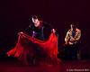 120211 Flamenco Vivo 058