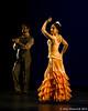 120211 Flamenco Vivo 008
