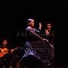 170226 Flamenco Vivo  131