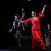 160214 Flamenco Vivo 520