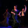 160214 Flamenco Vivo 004