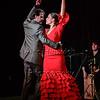 160214 Flamenco Vivo 517
