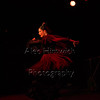 160214 Flamenco Vivo 200