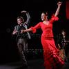 160214 Flamenco Vivo 521