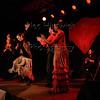 160214 Flamenco Vivo 871