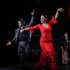 160214 Flamenco Vivo 519