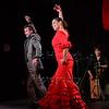 160214 Flamenco Vivo 518