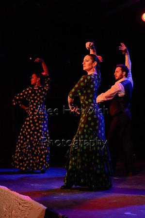 160214 Flamenco Vivo 005