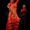 160214 Flamenco Vivo 403