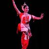 Sujata Mohapatra Odissi Performance<br /> Hayti Center<br /> Durham, NC U.S.A.<br /> October 30, 2010<br /> <br /> filename: 101030 Sujata Mohapatra 136